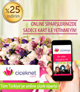 Picture of                Çiçeknet% 25 Discount Coupon