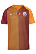 Picture of Galatasaray M SS HM Stadium JSY Jersey Size L