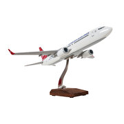 Picture of TK Collection B737 800 1/100 Model Uçak