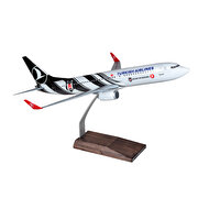 Resim  TK Collection B737/800 1/100 BJK Model Uçak