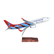 Resim  TK Collection B737/800 1/100 TS Model Uçak