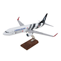 Picture of TK Collection B737/800 1/100 BJK Model Plane