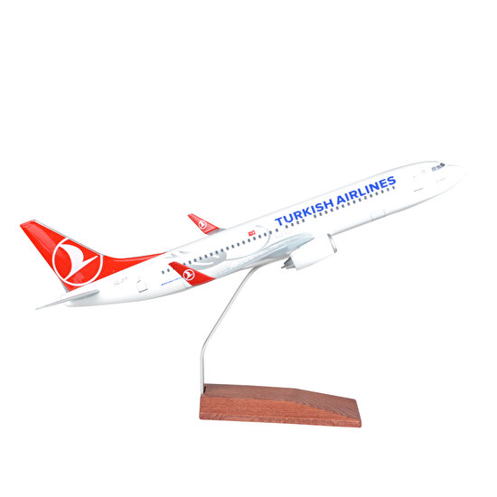 TK Collection B737 800 1/100 Model Uçak