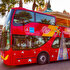 Picture of City Sightseeing Dubai 1 Day Pass - Adult