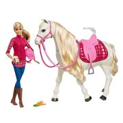 Picture of Barbie FRV36 Dreamhorse Doll and Horse