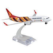 Resim   TK Collection B737-800 1/250 GS Metal Model Uçak