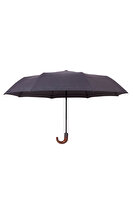Picture of  Biggbrella 10323-Q165A Mini Automatic Umbrella