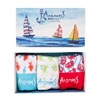 Picture of BiggDesign AnemosS Women Socks Set