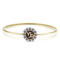 Picture of BiggDesign Horoscope Bracelet, Capricorn