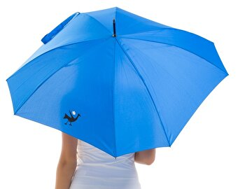 BiggDesign Blue Umbrella, Peacock Pattern
