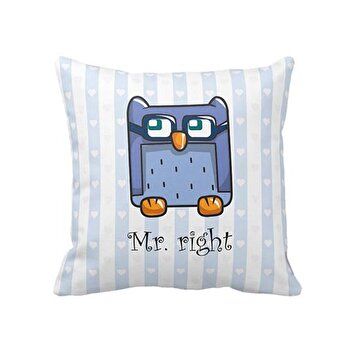 Изображение Bigghome Owl Mr.Right Pillow Case
