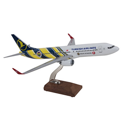Resim   TK Collection B737-800 1/100 FB Model Uçak