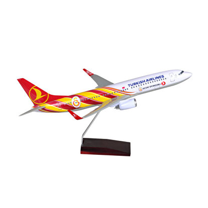 Resim   TK Collection B737-800 1/100 GS Model Uçak