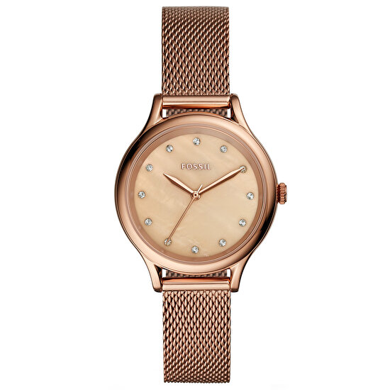 Picture of Fossil XSASFBQ3392 Bayan Saat