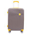 Picture of  Baggaj V341 Large Grey Luggage