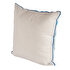 Picture of BiggDesign AnemoSS Route Pillow