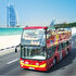 Picture of City Sightseeing Dubai 1 Day Pass - Children
